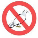 Control palomas Cali